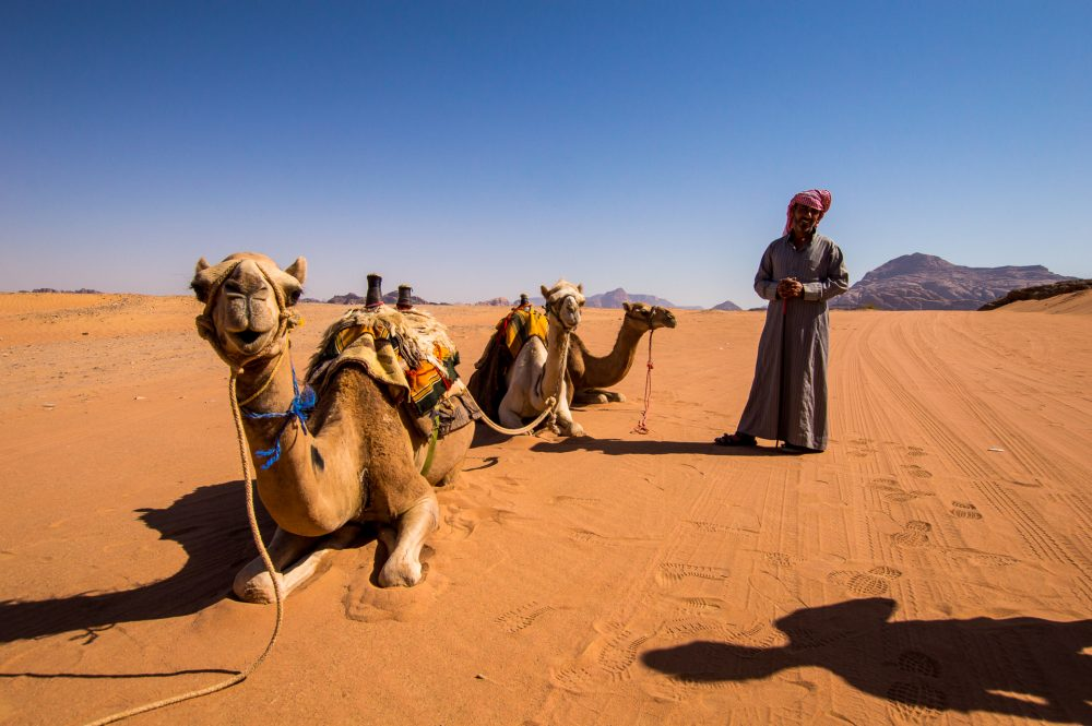 Another way to see the desert is on a camel train in Wadi Rum, Jordan – Ben Finch