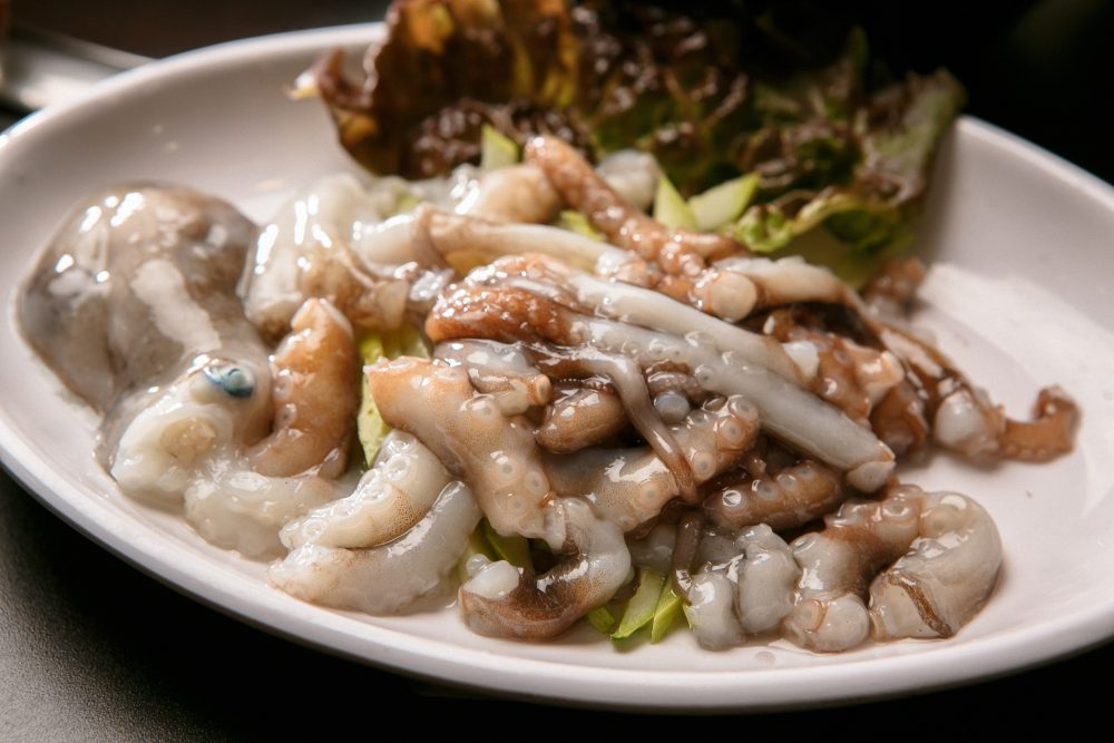 The functioning suckers on the octopus' arms make San-nakji a choking hazard — Shutterstock