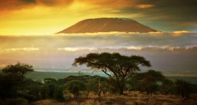 kilimanjaro record