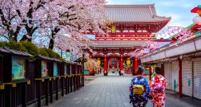 These are the 15 best places to see cherry blossom in the world – Shutterstock cherry blossom festival sakura hanami