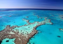 "Great Barrier Reef shows ""substantial signs of recovery"""