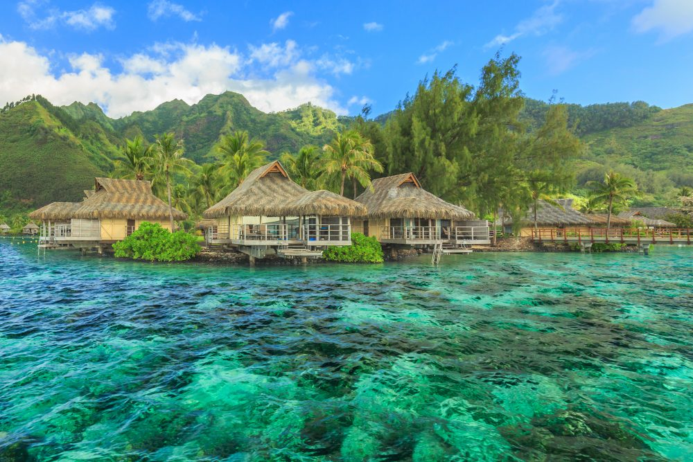 The most hard working U.S citizen has a chance to get fee vacation in Tahiti — Shutterstock viking bans kids from cruises