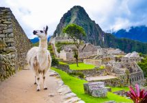9 best things to do in Peru