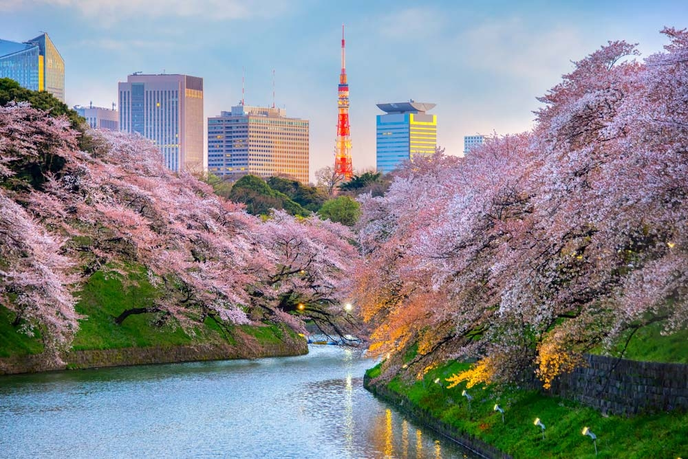 Japan, together with Singapore, has the strongest passport in the world — Shutterstock