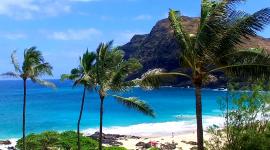 1000×1000-hawaii-remote-working